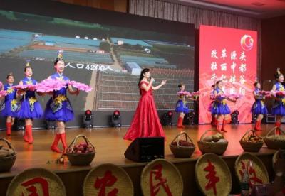 安徽凤阳:2020年小岗村农民丰收节开幕