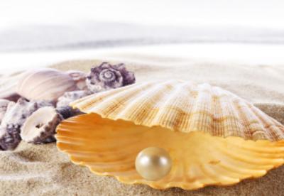 阿布扎比珍珠贸易在5个月内跃升至88亿迪拉姆