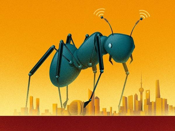 """蚂蚁集团和金融科技""""成年"""""""