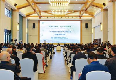聚焦产地初加工 促产业提质增效——2020年贵州省中药材产业推进大会在丹寨举行
