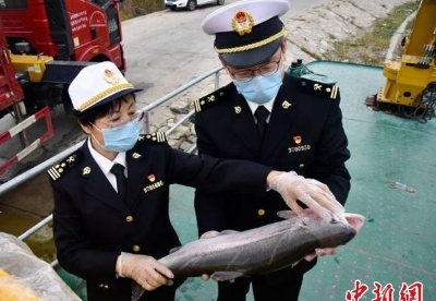 青海省外贸进出口额实现年内首次正增长