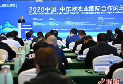 2020中国-中东欧农业国际合作论坛在成都举行