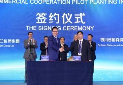 中国已成佳沛全球最大市场 首个奇异果商业化合作种植试点正式启动