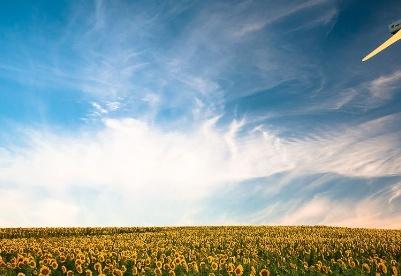 可再生氢会有助于欧洲团结吗?