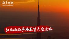 红西凤的历届展望大会之旅