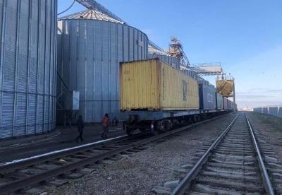 1139吨中亚大麦将首次乘中欧班列运抵郑州