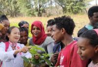 中国教师援助埃塞俄比亚农业职业教育