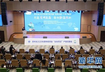 贵州省中药材(大健康)电商平台正式上线