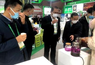 「聚焦农交会贵州中药材」因地制宜强产业 带动脱贫助增收