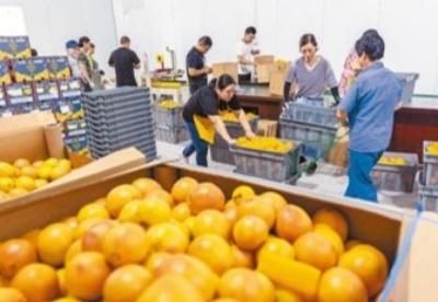 共享中国机遇 共促复苏增长