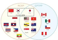 高洪:在做大做强RCEP基础上考虑加入CPTPP