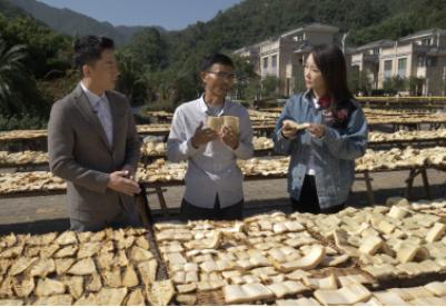 新华社《味道》走进广东英德 产业扶贫实现收入提升