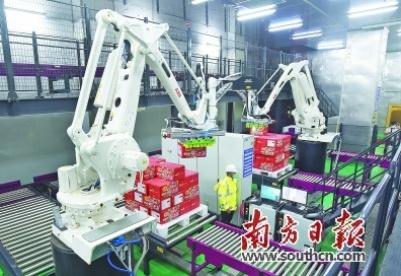 大项目点燃大发展引擎,新兴与传统产业交相辉映 湛江:建设高水平现代产业体系引领高质量发展