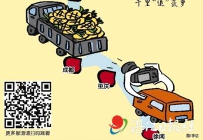"""湛江日报社""""西部陆海新通道上的徐闻菠萝""""系列报道启动"""