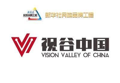 视谷中国:视觉服务中国,一站式为您打造专属优质视觉内容