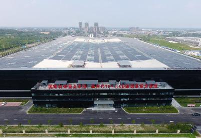 安徽蚌埠:发展硅基生物基新材料产业  助力加速实现碳达峰、碳中和