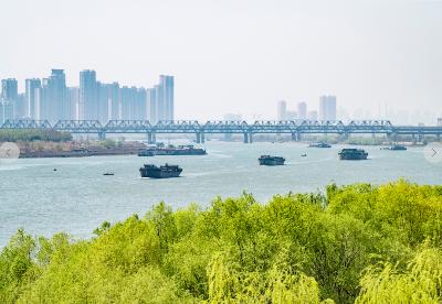 安徽蚌埠:改革铺展乡村振兴之路