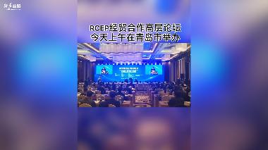 RCEP经贸合作高层论坛在青岛举办