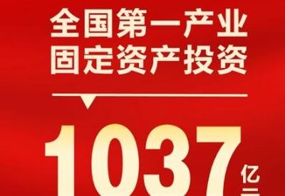 1-2月全国第一产业固定资产投资达1037亿元 同比增长61.3%