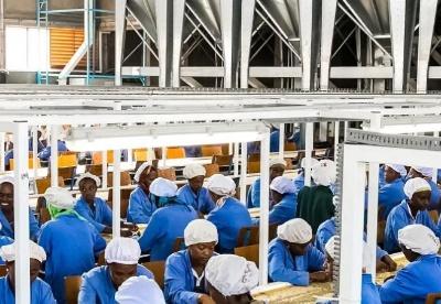 撒哈拉以南非洲青年就业前景