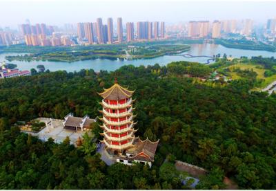 """安徽蚌埠:建立""""五长五联""""机制  深化林长制改革"""
