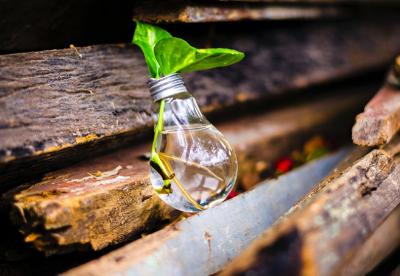 印度绿色转型所需的基本材料供应