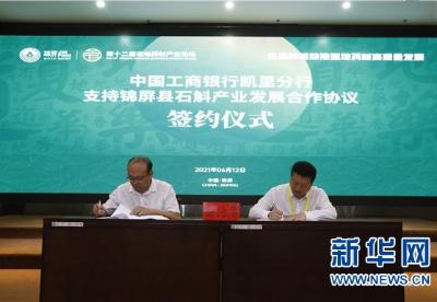 第十二届道地药材产业论坛在锦屏举行