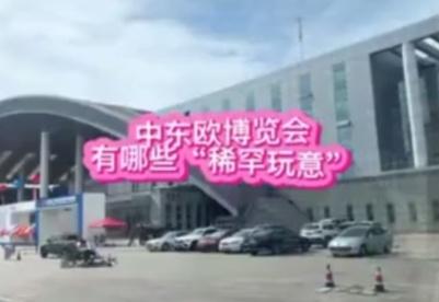 """第二届中国-中东欧博览会有哪些""""稀罕玩意""""?"""