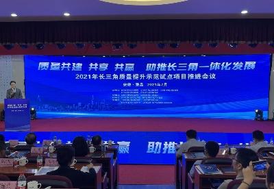 长三角质量提升示范试点项目推进会议在芜湖市繁昌区召开