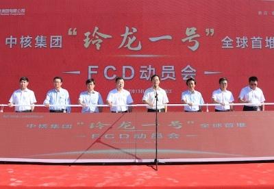 """海南昌江核电小堆示范项目""""玲龙一号""""开工建设"""