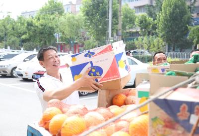 凤阳县税务局倾力解决瓜农甜瓜滞销难题