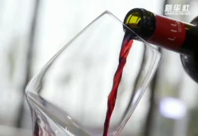 首届中国(宁夏)国际葡萄酒文化旅游博览会举行开幕式