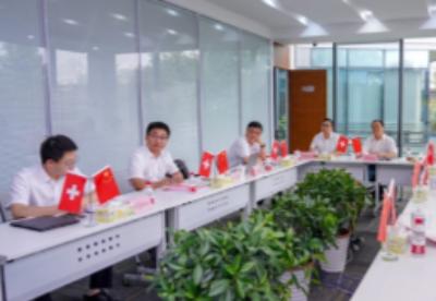 中国(湖南)-瑞士(沙夫豪森) 线上智能网联研讨会举行