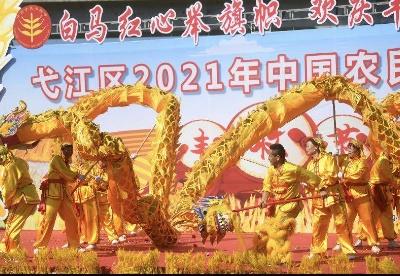 芜湖弋江区首届中国农民丰收节精彩呈现