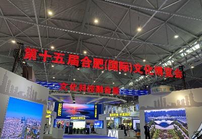 第十五届合肥(国际)文化博览会开幕