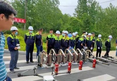 """安徽巢湖:林业""""标准化+""""行动为乡村振兴赋能"""