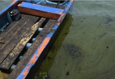 美专家分析石油在委内瑞拉环境和经济中的作用