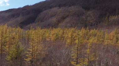 2021长白山金秋音乐诗会第三季《长白山的秋》