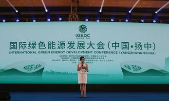 International Green Energy Development Conference held in Yangzhong, Jiangsu
