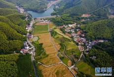 China plans to boost rural development via digital technologies