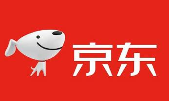 JD.com's online shopping spree sales hit 204 bln yuan