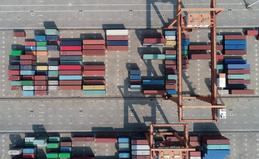 China's bulk commodity market rebounds in November