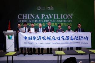 Chinese energy firms call on more efforts to fight against climate change at COP25