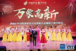 合肥高新区举行企业表彰大会暨职工春节联欢会