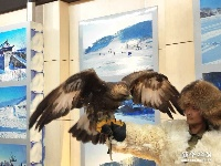 第二届中国·吉林国际冰雪旅游产业博览会图片专题