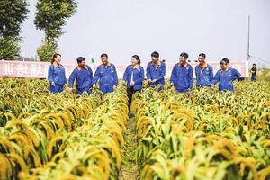 吉林省向着率先实现农业现代化的目标挺进