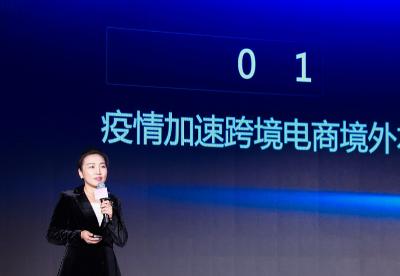 武长虹:提升跨境电商核心竞争力的关键是海外服务机构的集聚