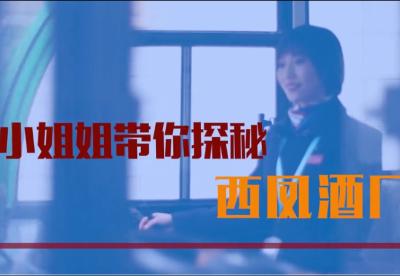 红西凤品牌故事 | 小姐姐带你探秘陕西省西凤酒厂