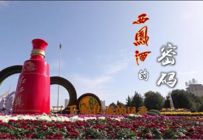 红西凤品牌故事 | 西凤密码