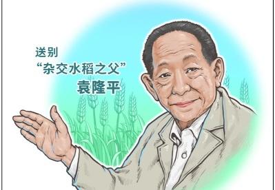 袁隆平最后的时光:病危之际,还关心稻子长势